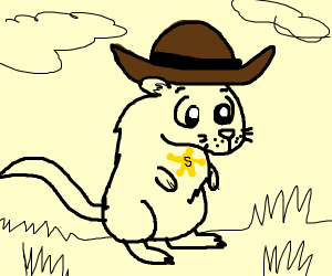 Cute gerbil in a cowboy hat