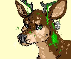 mossy deer
