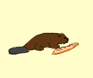 beaver with a bagette