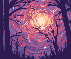 Forest sunset with stars and a starfall