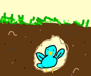 Underground Bird