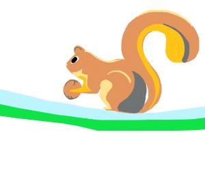 fox on flying rug