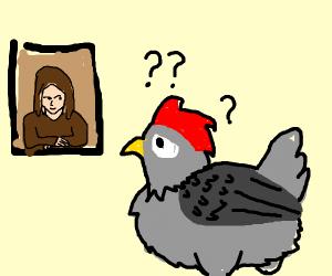 chicken does not understand art