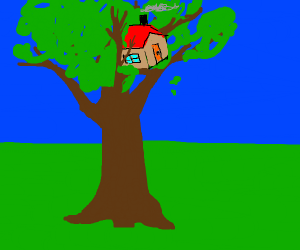 House stuck in a tree