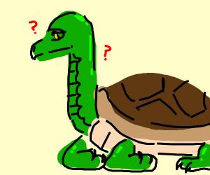 snake neck turtle