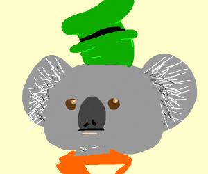 Goofy Koala