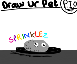 Draw your pet