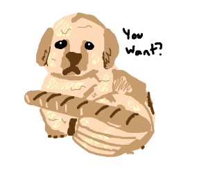 Dog human asks if you want the breadstick