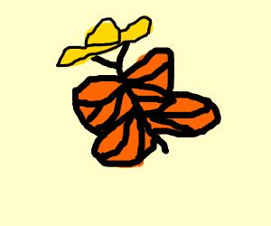 Butterfly wearing a Hat