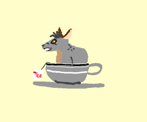 Hyena in a Teacup