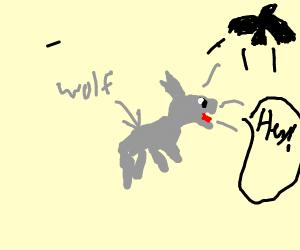 A wolf calling a bird