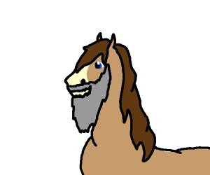 A horse with a long, grey beard