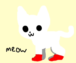White cat with red paws