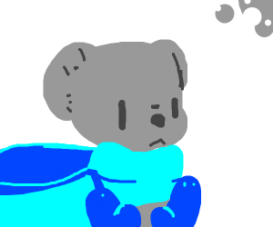 koala bear wearing blue scarf and mitts