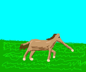 Long nose horse