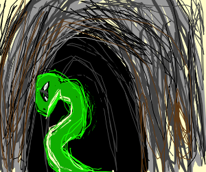A snake in a cave