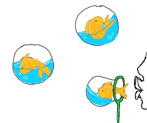 Blowing goldfish bubbles
