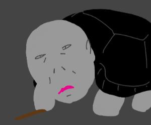 Voldemort Turtle