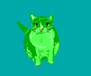 Green cat looks expectantly up at you