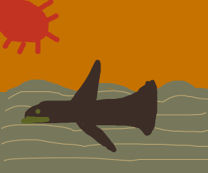 Shark amongst the waves