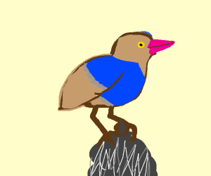 pink beaked bird that has a blue shirt