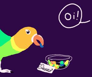 Parrot takes Jesus's jelly bean