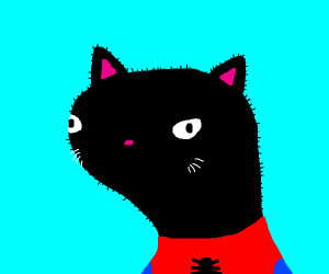 Black-Cat/Spooderman hybrid