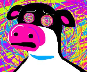 otis barnyard acid trip