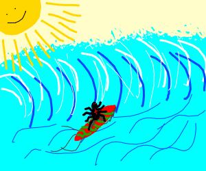Surf Spider