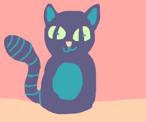 A cat clock but actually a cat