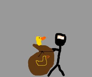 The has stolen my ducks