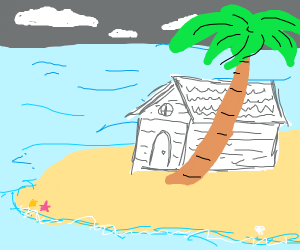 A white cabin behind a palm tree by the shore