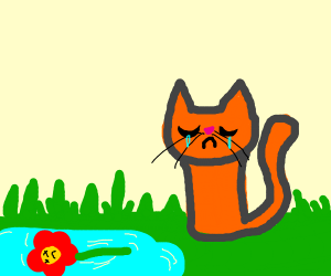 cat with dead flower in water