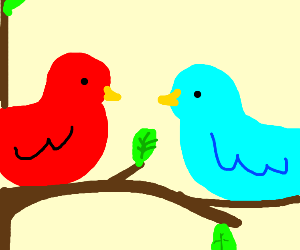 a red bird and a blue bird