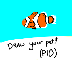 Draw your pet! (PIO)