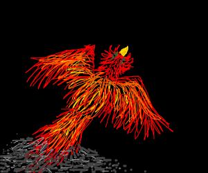 Phoenix takes flight