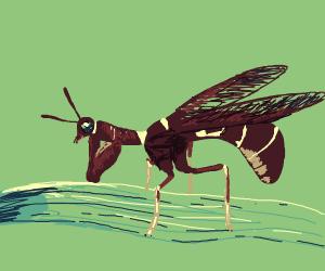 a buff mantes wasp moth hybrid