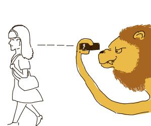 Lion stalks woman