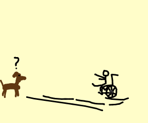man in wheel chair rolling away from dog