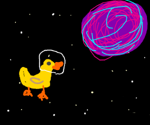 Space duck.