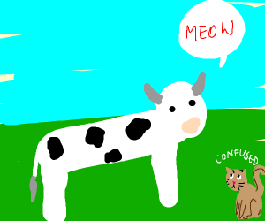 cow saying meow
