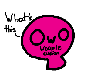 owo what's this (woopie cussion)
