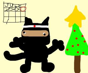 Ninja Tom celebrating Christmas in July