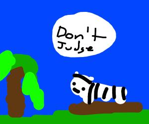 Zebra on a log
