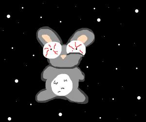 Rabbit in space (has seen terrible things)