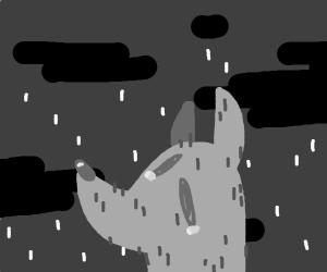 Sad puppy in the rain