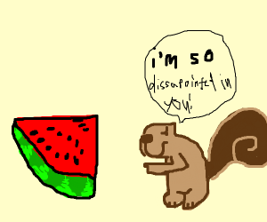 Squirrel is disappointed in watermelon slice.