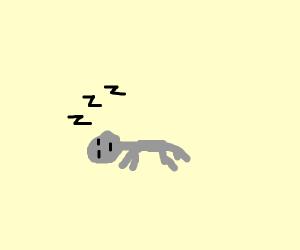 lil' grey man falls asleep