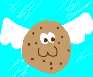 Frying a chocolate chip cookie :3