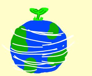 Earthy Plant